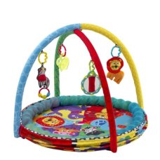Playgro Play Mat Ballenbak 5 in 1 Activity Gym